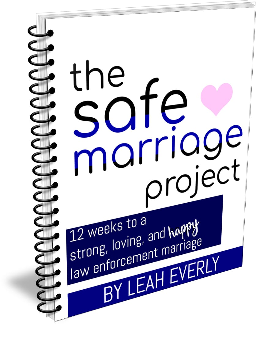 The Safe Marriage Project Workbook - Love and Blues